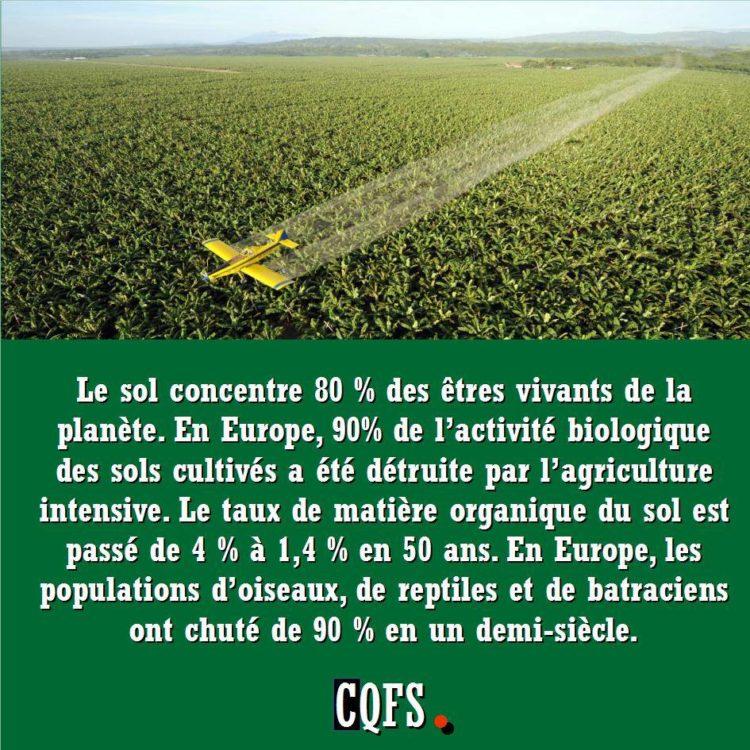 Collectif Terres communes SolEtEtresVivants-750x750